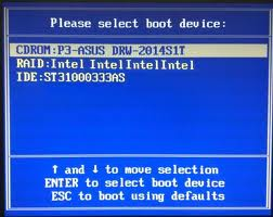 Screenshot Boot Loader Bios