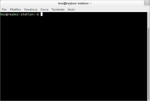 Immagine di un terminale di un sistema GNU/Linux
